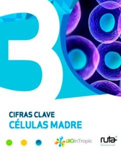 Portada infografia celulas madre