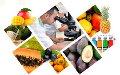 Proyecto de ingredientes naturales