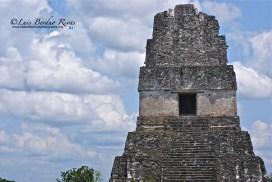 El Gran Jaguar Tikal foto por Luis Berduo Rivas - Fotos de Construcciones de los Mayas y sus Descendientes