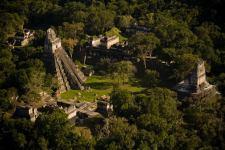 Tikal foto por Ivan Castro Guatemala - Fotos de Construcciones de los Mayas y sus Descendientes