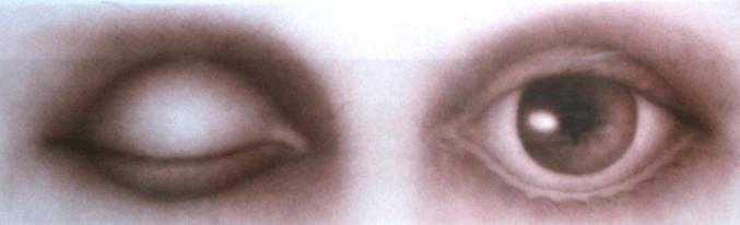 Rodolfo Abularach dos ojos - Rodolfo Abularach, artista plástico y dibujante