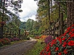 San Pablo Xucaneb Alta Verapaz foto por Waseem Syed - Galeria - Fotos de Guatemala por Waseem Syed