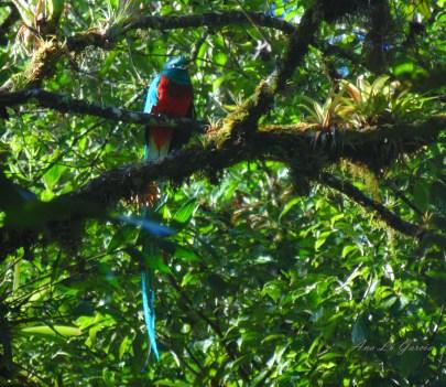 33 - Guía Turística - Ranchitos del Quetzal