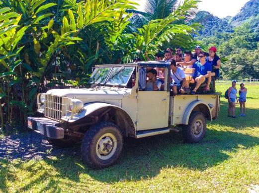 safari - Guía Turística - Hun Nal Ye
