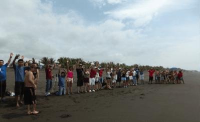 liberacion de tortugas 7 - Guía Turística - Liberación de Tortugas