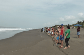 liberacion de tortugas4 - Guía Turística - Liberación de Tortugas