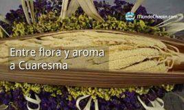 Entre flora y aroma a Cuaresma