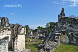 Detalle de la Gran Plaza, Tikal - 2 - foto por Luis Berduo Rivas