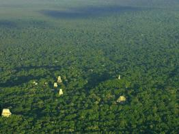 Tikal - foto por Rony Veliz