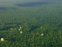Tikal foto por Rony Veliz - Guia Turística - Tikal, El Lugar de las Voces