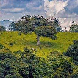 Vista en Guatemala - foto por Carlos Lopez Ayerdi