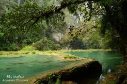 semuc champey alta verapaz foto por billy mun cc 83oz de acuarela chapina - Galeria de Fotos de Guatemala por Billy Muñoz