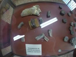 """los caballos estuvieron antes de los espan cc 83oles en guatemala - Guía Turística - Sitio Paleontológico """"El Mamut"""""""