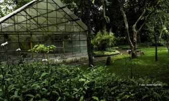 Jardín Botánico de Guatemala