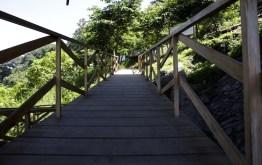 mg 6803 1 - El Parque La Asunción, la naturaleza dentro de la ciudad