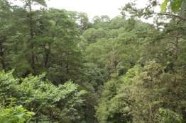 img 7017 - Parque Ecológico Kanajuyú, un lugar para disfrutar dentro de la ciudad