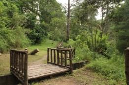 img 7025 - Parque Ecológico Kanajuyú, un lugar para disfrutar dentro de la ciudad