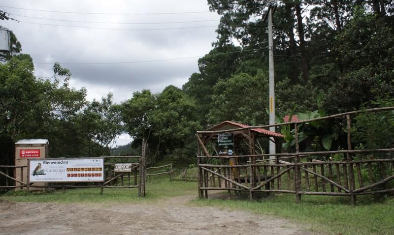 Parque Ecológico Kanajuyú, un lugar para disfrutar dentro de la ciudad