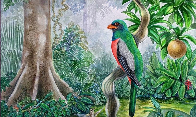 Especies en peligro de extinción en las pinturas de Robin Schiele
