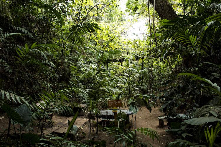 img 8897 21 - Conoce el parque ecológico de Guatemala reconocido en Italia