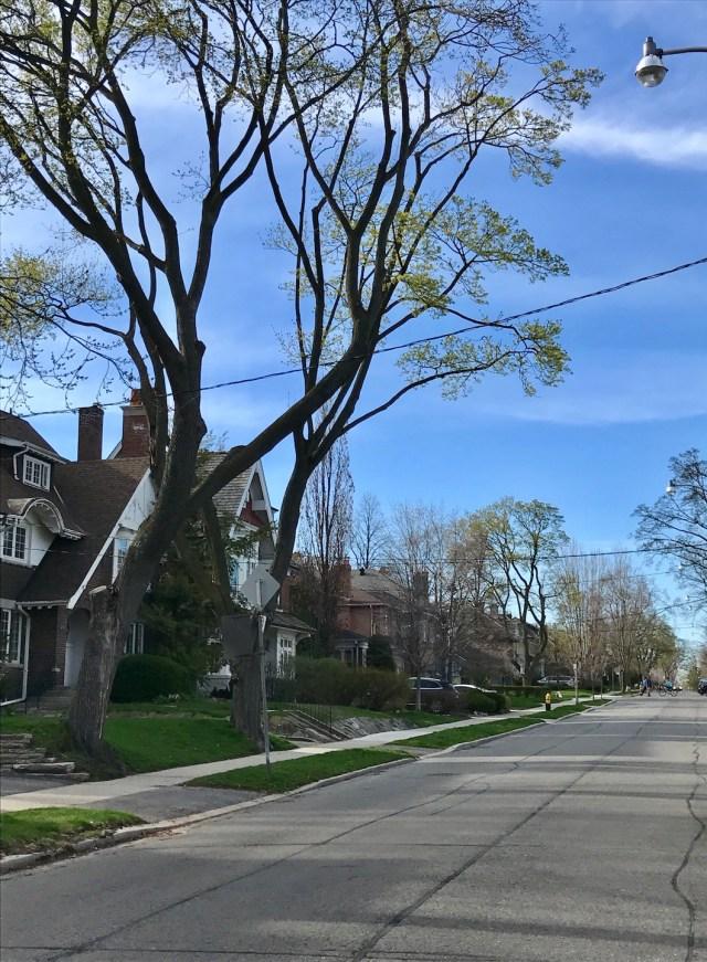 Ruas residenciais de Toronto