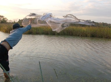 Casting the Net