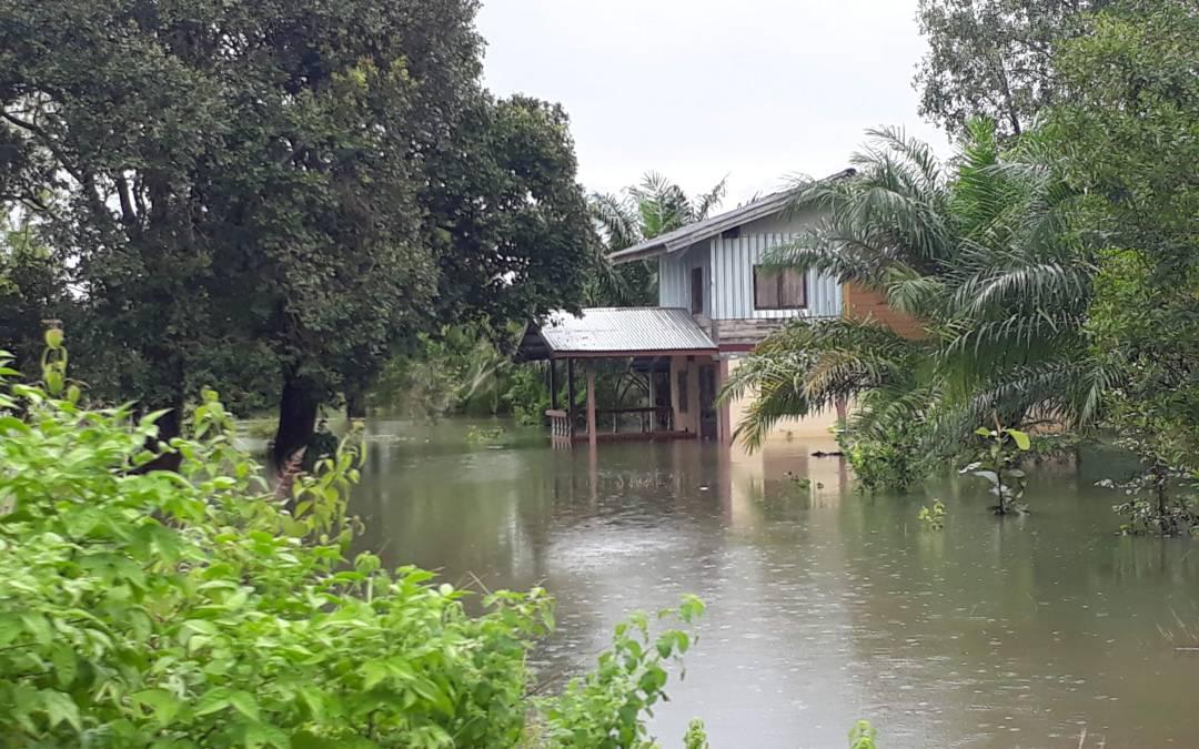 Disaster Relief Efforts