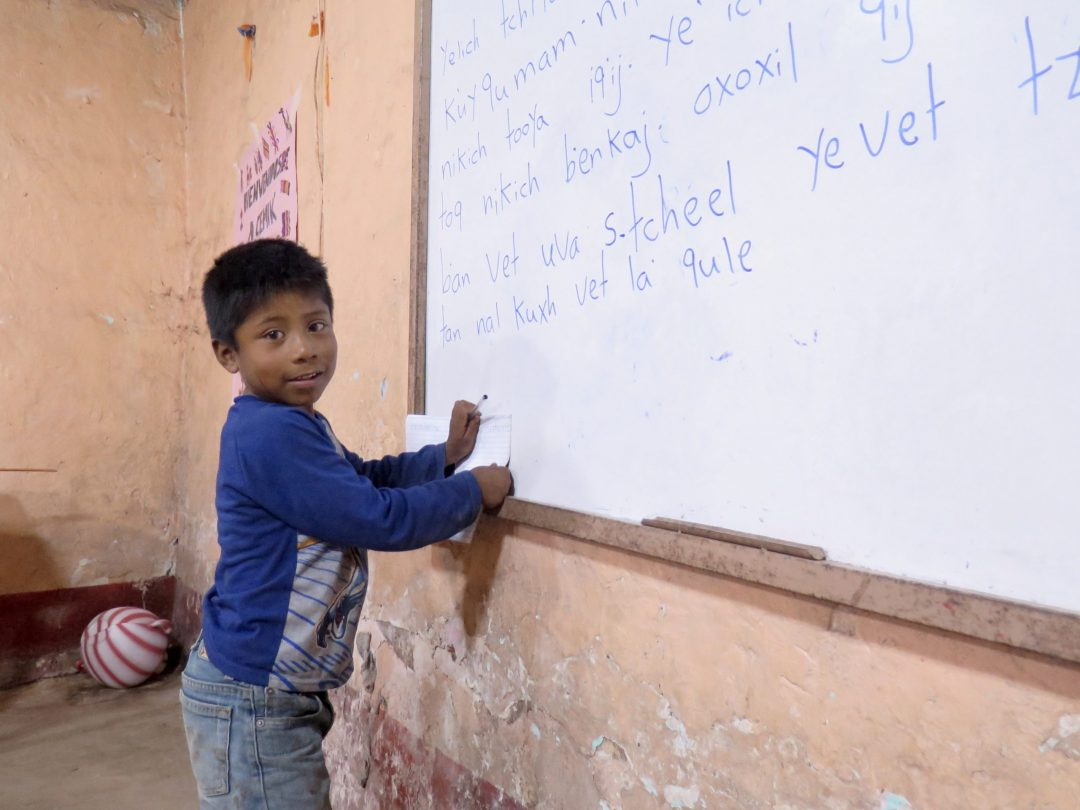 educational Center CEMIK student