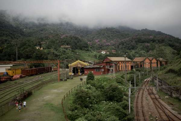 Tren impacto ambiental