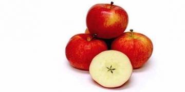 Cruzamentos loucos de frutas que você nunca pensou que existisse