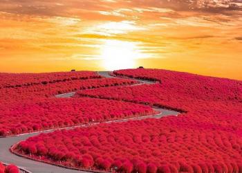 Foto gump do dia: Paisagem espetacular no Japão
