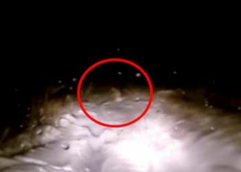 """Polícia confirma: """"Vimos o corpo de um Yeti na beira da estrada"""""""