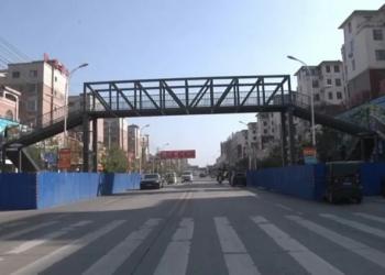 Mãe superprotetora gasta uma fortuna para instalar duas passarelas para que o filho não precise atravessar a rua