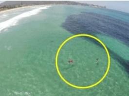 Manha negra surge no mar, mas não era o que aparentava