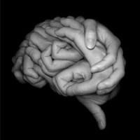 Seis virtudes: Conocimiento y Sabiduría