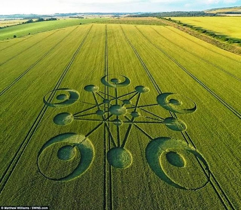 Círculo de la cosecha aparece en Dorset Reino Unido - 14 de julio 2014