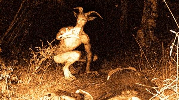 Extraño Ser Visto En La Selva Peruana