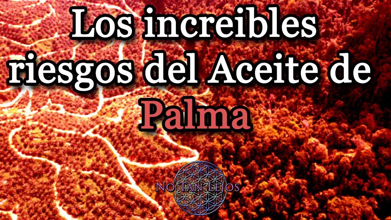 Los peligros del aceite de palma - NoTanLejos