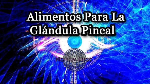 Alimentos Para Descalcificar La Glándula Pineal + Lista De Aguas Sin Flúor