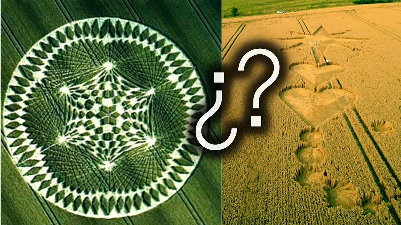 ¿Sabrías diferenciar un círculo verdadero de uno falso?