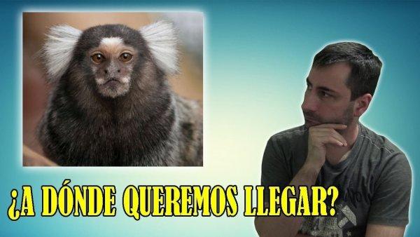 Científicos Ponen un GEN HUMANO en el Cerebro de un Mono y Ocurre lo Increíble