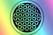 Geometría sagrada: la flor de la vida INCREIBLE