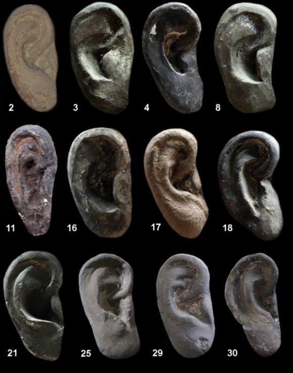 Individuales formas del oído arcilla y estilos representados