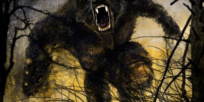 werebear by ridvan duak1l - Bestia de #ocumar