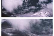 ¿Existieron los dragones? En China tienen EVIDENCIAS definitivas.