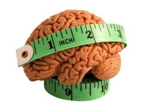 cerebro2 - ¿Por qué se están reduciendo los cerebros de los seres humanos?