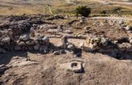 Cómo comenzó la vida en la Tierra? Biólogos aseguran que hay una evolución alternativa