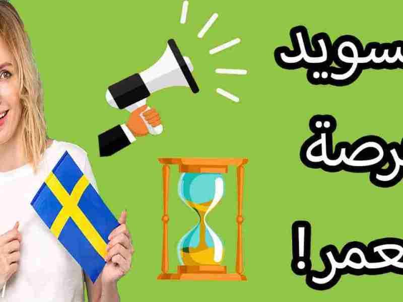 المنحة السويدية الشهيرة SISGP مع تمويل ضخم جدّاً