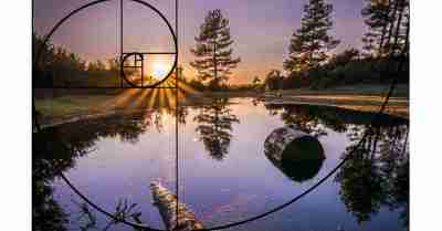 قاعدة اللولب الذهبي في التصوير الفوتوغرافي Golden Spiral