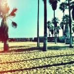 praia tumblr